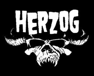herzog-wordpress.jpg